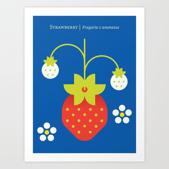 Fruit: Strawberry Art Print