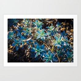 Wash of Colour Art Print