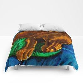 Sleepy Boy Comforters
