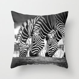 """""""Patterns in Nature"""" Throw Pillow"""