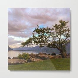 Scenics - Nature Metal Print