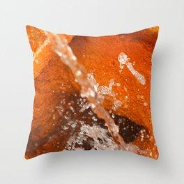 Ferrous water Throw Pillow