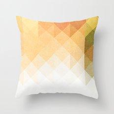Three Way Retro  Throw Pillow