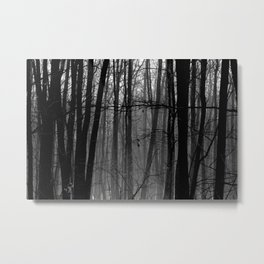 Trees in winter Metal Print