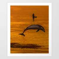 Dolphin by sunset in the Uk Art Print