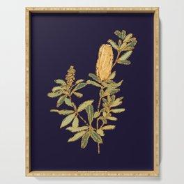 Banksia on Indigo Blue Botanical Illustration Serving Tray