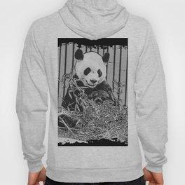 Panda Bear Cutie Hoody