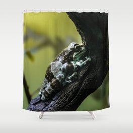 Frog Far From Home Shower Curtain