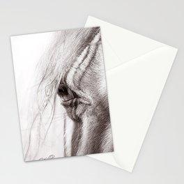 Perlino Eye Stationery Cards