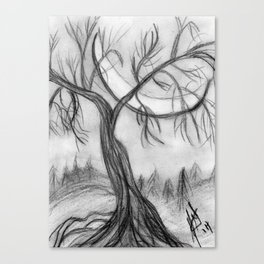 Willow in the Valley Canvas Print