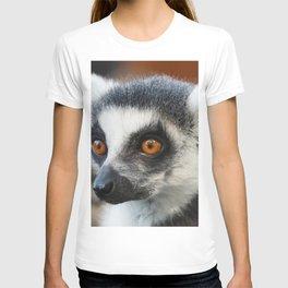Ring tailed Lemur (Lemur catta) close up portrait T-shirt
