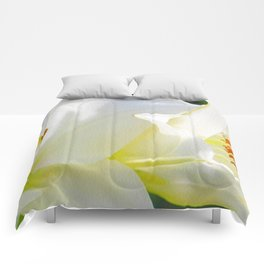 White Lilies Comforters