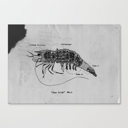 The Incredible World Of False History Cross Sections Pt.2 The Prawn Canvas Print