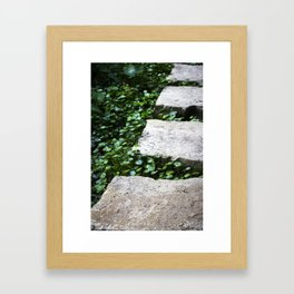 Stone Steps Framed Art Print