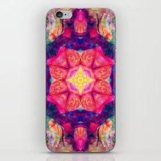 Mandala 35 iPhone & iPod Skin