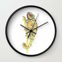chameleon Wall Clocks featuring chameleon by merry