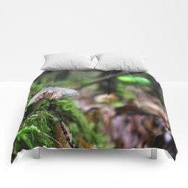 Under My Feet Comforters