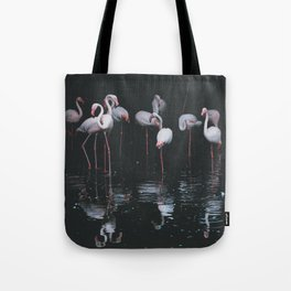 Flamingo Group in the Water Tote Bag