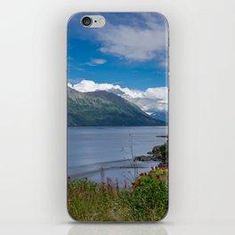 On The Road To Hope, Alaska iPhone Skin