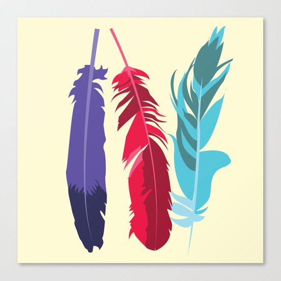 Indie Feathers  Canvas Print