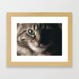 Sage Green Stare Framed Art Print