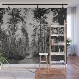 the path through the forest ... Wall Mural