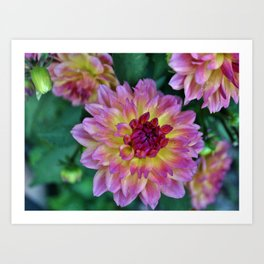 Beauty In The Garden Art Print