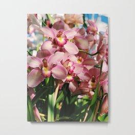 Pink Orchids in Brooklyn Metal Print