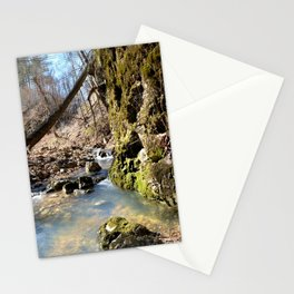 Alone in Secret Hollow with the Caves, Cascades, and Critters - Peering into the Cold, Clear Spring Stationery Cards