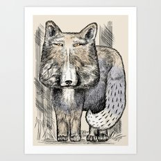 The serious tibetan fox. In nature has the same facial expression)))). Engraving Art Print