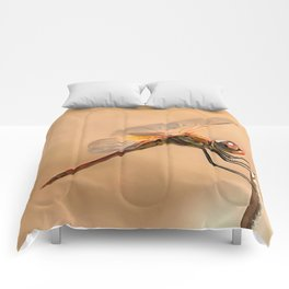 Painted Dragonfly Isolated Against Ecru Comforters