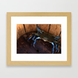 Crabs in the Creek Framed Art Print