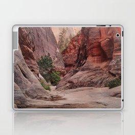 Through the Canyon Laptop & iPad Skin