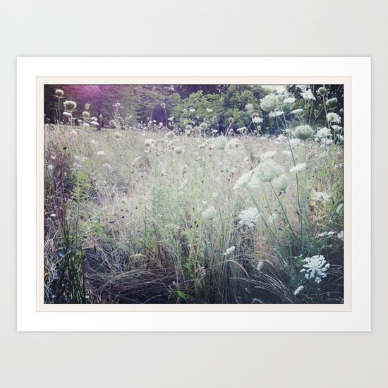 St. James Park Art Print
