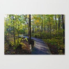 Boardwalks of southern Ontario, CA Canvas Print