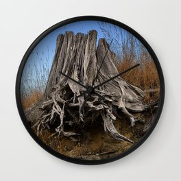 WEATHERED STUMP AND ROOTS ON BEACHSIDE BLUFF Wall Clock