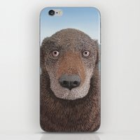 lucy iPhone & iPod Skins featuring Lucy by Ian Clyde