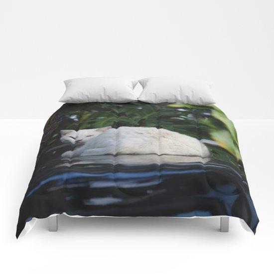 Laze Comforters