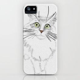 Green Eyed Greedy Cat iPhone Case