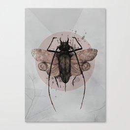 Nightfall 30 Canvas Print