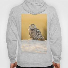 Snowy Owl Hoody