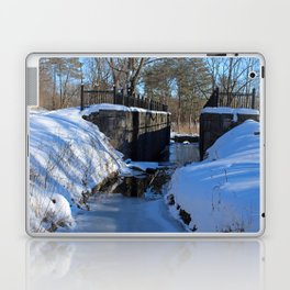 Side Cut Lock in Winter I Laptop & iPad Skin
