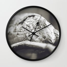 Southeastern Girdled Lizard Wall Clock