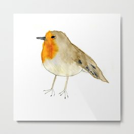Robin the Robin Metal Print