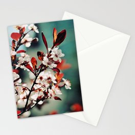 Beautiful Spring Stationery Cards