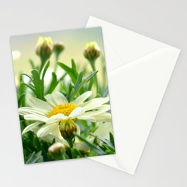 Summer Fowers 277 Stationery Cards