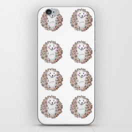 Cute watercolor hedgehog iPhone Skin