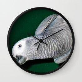 Parrot swing Wall Clock