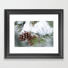 After the Snow Framed Art Print