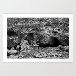 Pumbaa Art Print